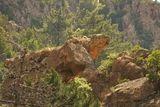 Le rocher de la Tortue - © Kalysteo.com