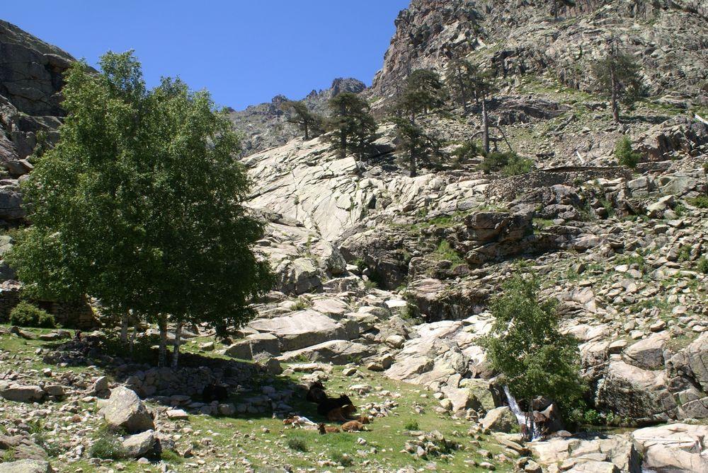 Sur le sentier menant à la cascade de Radule
