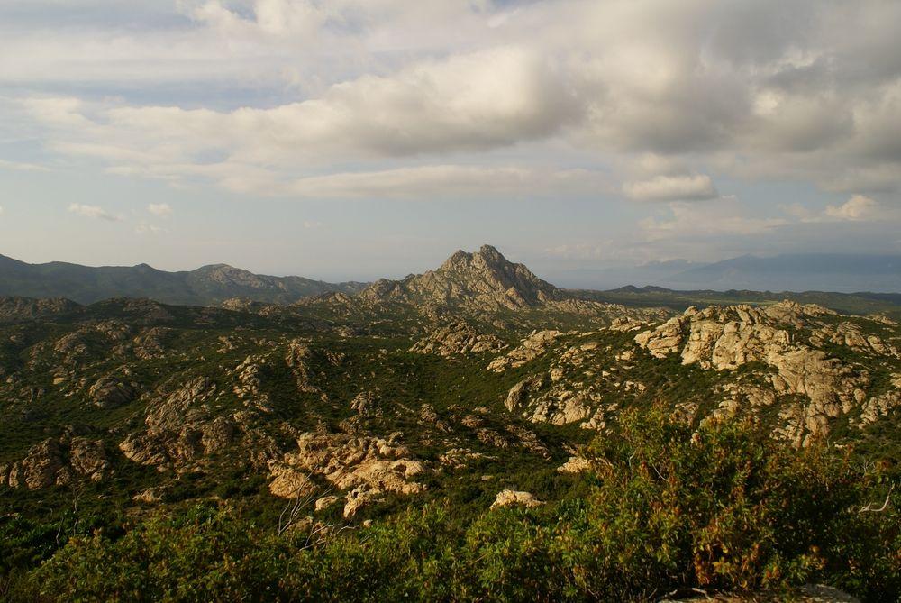 Le désert des Agriates, vu de la D81