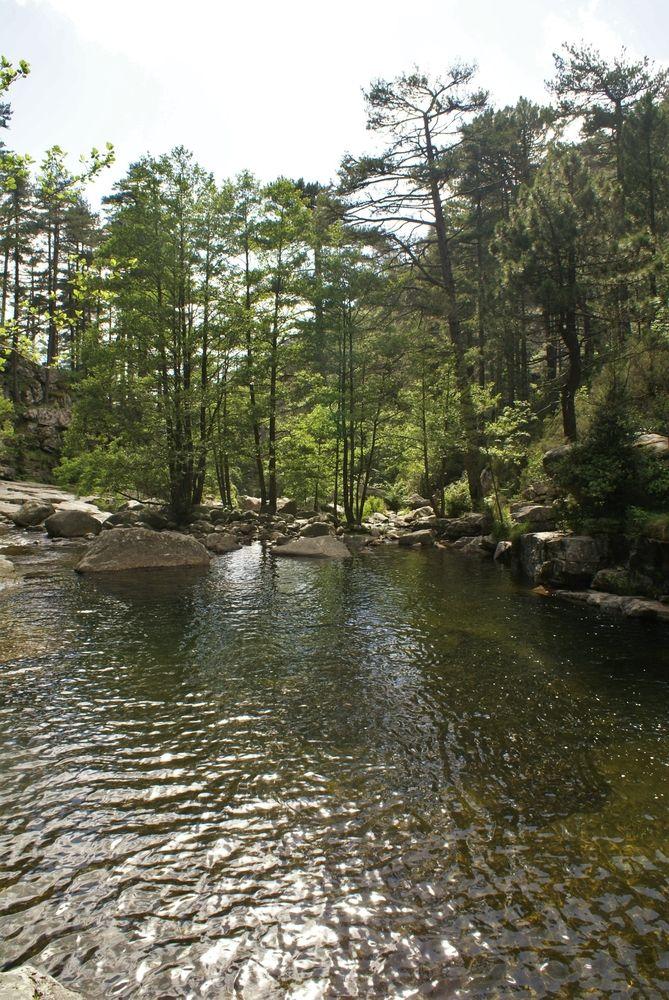 Grande piscine naturelle