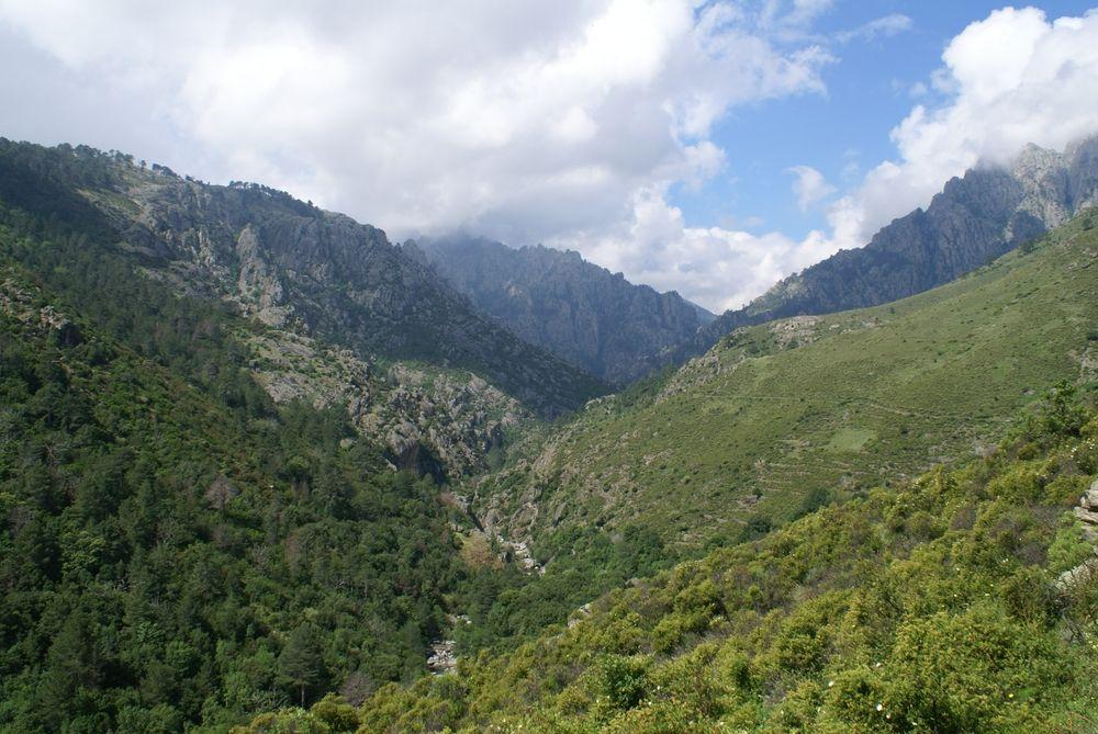 Les gorges du Tavignano