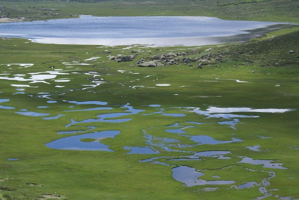 Le lac de Nino et les pozzines
