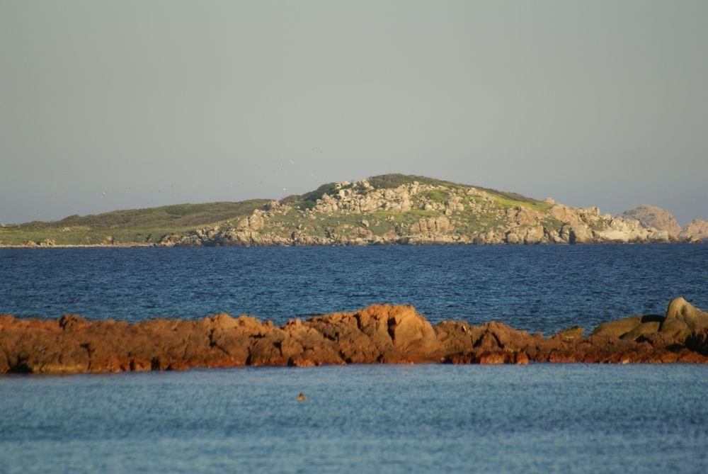 Vue sur les îles Cerbicale