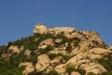 Lion de Roccapina - © Kalysteo.com