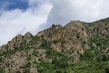 Vallée de l'Asco - © Kalysteo.com